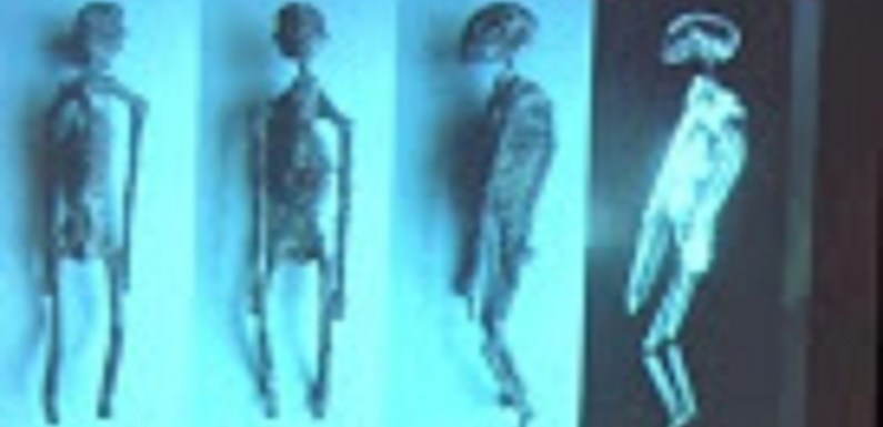 Supostas múmias de ETs podem ter sido encontradas no Peru; veja as imagens