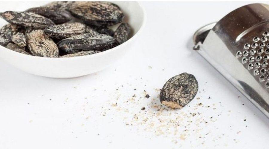 Cumaru, a deliciosa e requintada semente que cresce no norte do Brasil e pode ser fatal