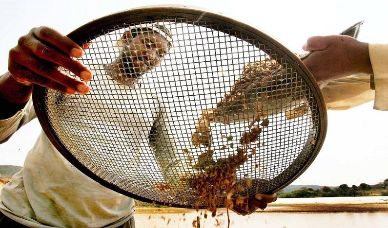Ibama desativa 29 balsas de garimpo ilegal em terra indígena no Pará