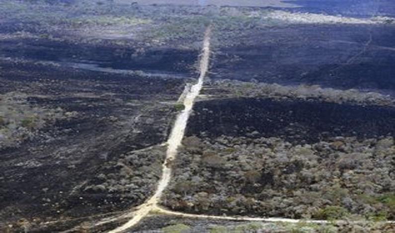 Polícia Federal inicia investigação sobre incêndio na Chapada dos Veadeiros