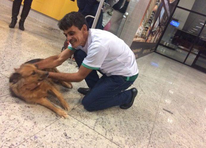 """Abandonado em lixeira quando bebê, homem cumpre promessa e traz """"Princesa' a Curitiba"""