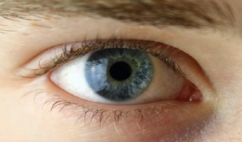 Cientistas encontram possível causa da dislexia em células nos olhos