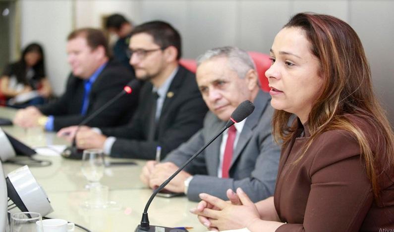 Rosangela Donadon participa de Comissão e recebe artesãos do Estado