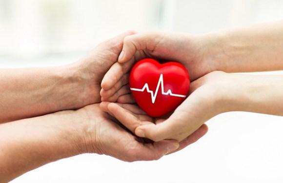 Comissão aprova mudança na norma para doação de órgãos em caso de falecimento