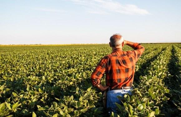 Diário Oficial publica regras para Imposto sobre Propriedade Rural