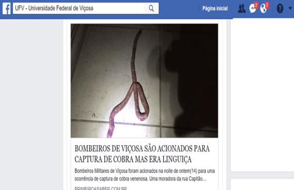 Mulher confunde linguiça com cobra e pede socorro aos bombeiros em MG
