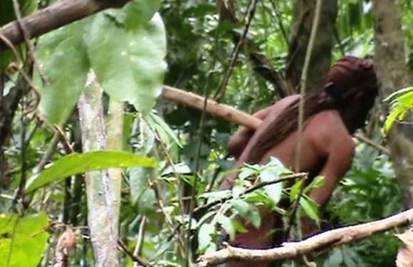 Último sobrevivente de tribo, índio vive solitário há 22 anos em floresta de RO