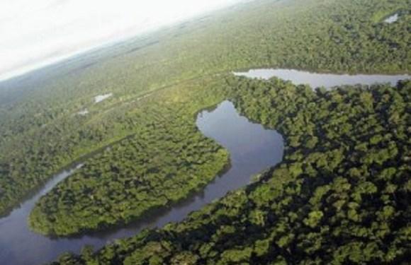 O que se sabe sobre desaparecimento de avião com indígenas na Floresta Amazônica