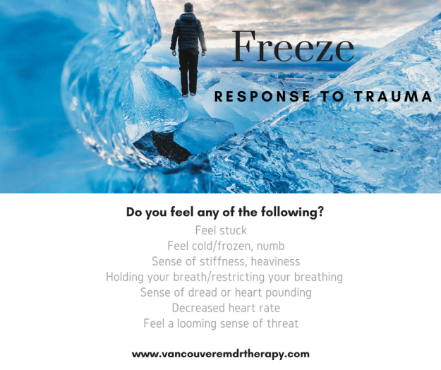The Freeze Response To Trauma (1)
