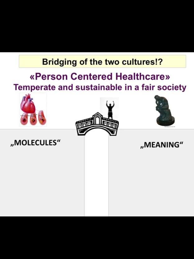 bridging cultures
