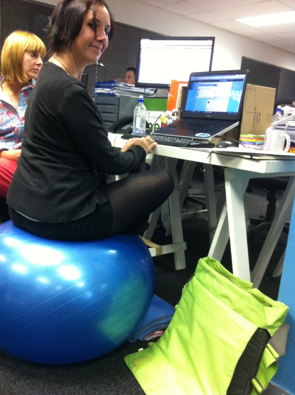 Exercise Ball Desk Chair Office Chair Vs Exercise Ball The Pain In The Blog