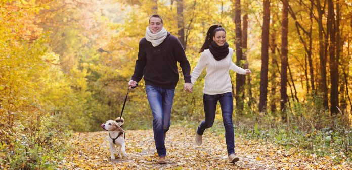 fall activities with joint pain