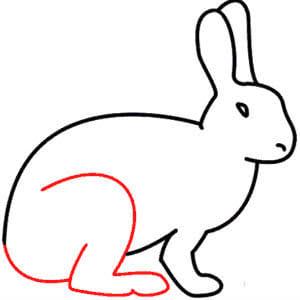 كيف ارسم أرنب للاطفال بالخطوات