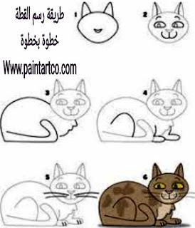 رسم قطة بالرصاص للاطفال