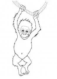 رسومات اطفال للتلوين