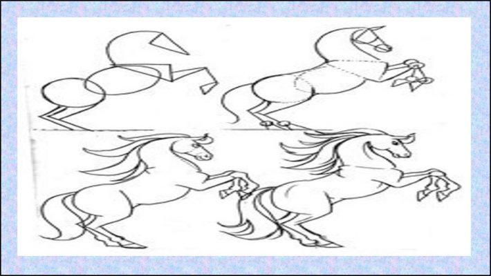 رسومات سهلة وجميلة للحصان
