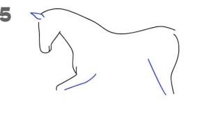 رسم حصان بالصور والخطوات