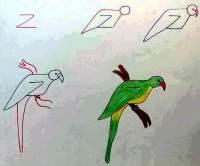 تعليم الأطفال الرسم بالحروف