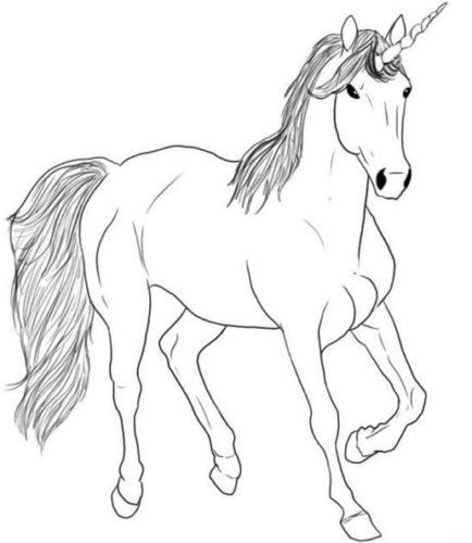 رسومات اطفال سهلة صور تلوين حيوانات حصان