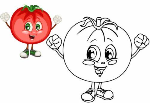 تلوين فواكه وخضراوات ثمرة طماطم