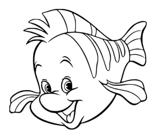 سمكة كيوت وجميلة غير ملونة