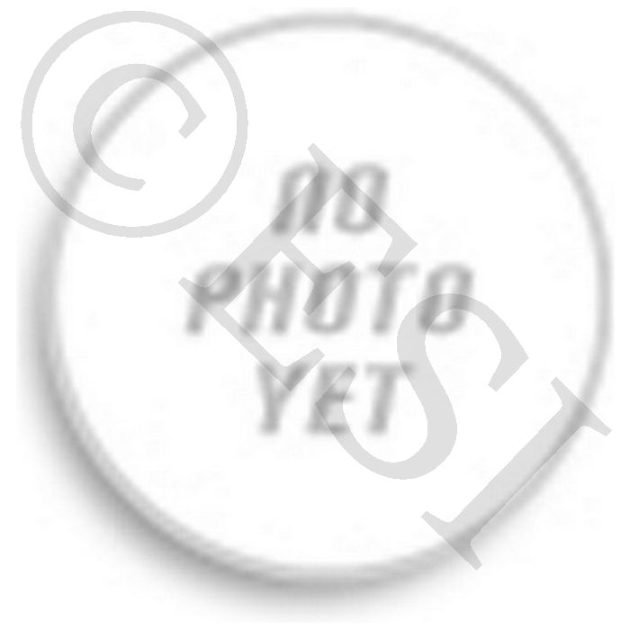 Planet Eclipse O-Ring & Detent Kit 2014 [CS1, Ego, Etha