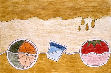 Drawing of a citrus fruit and a tomato with a drinking glass in between
