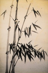 Oriental Painting of Bamboo