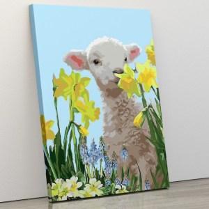 Baby Lamb amongst the Daffodils