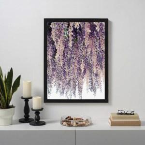 Purple Wisteria