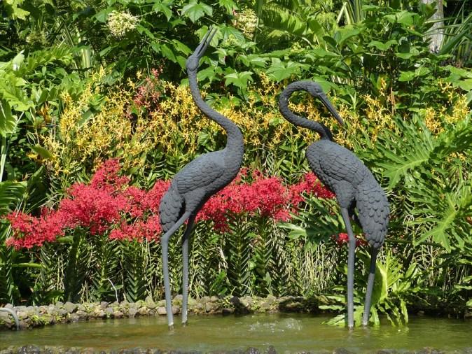 pixabay_singapore-jardin-botanique217998_960_720