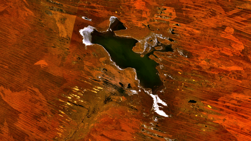 800px-Lake_Dora,_Western_Australia_satellite_image