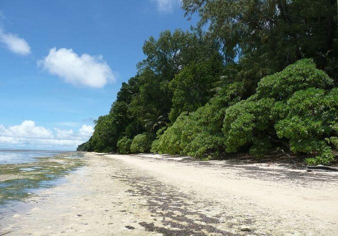 800px-Palau_periryu_orange_beach