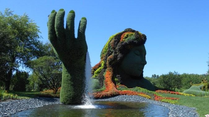 jardin-202150_960_720