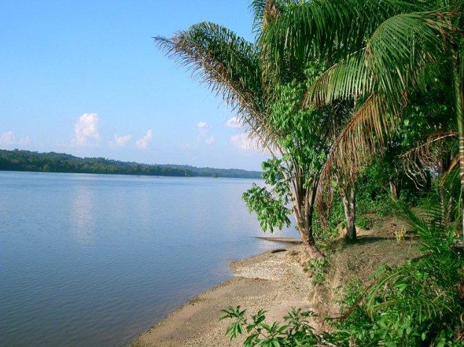 Maroni_Fluss_Uferregion