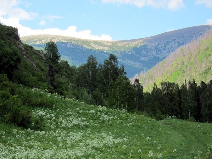 800px-View_on_Tamanyol_Pass