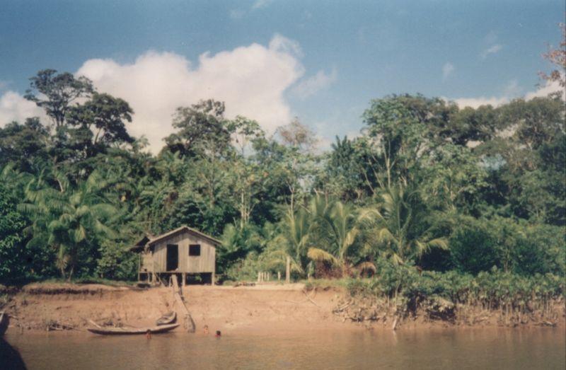 800px-Amazonia-moradia