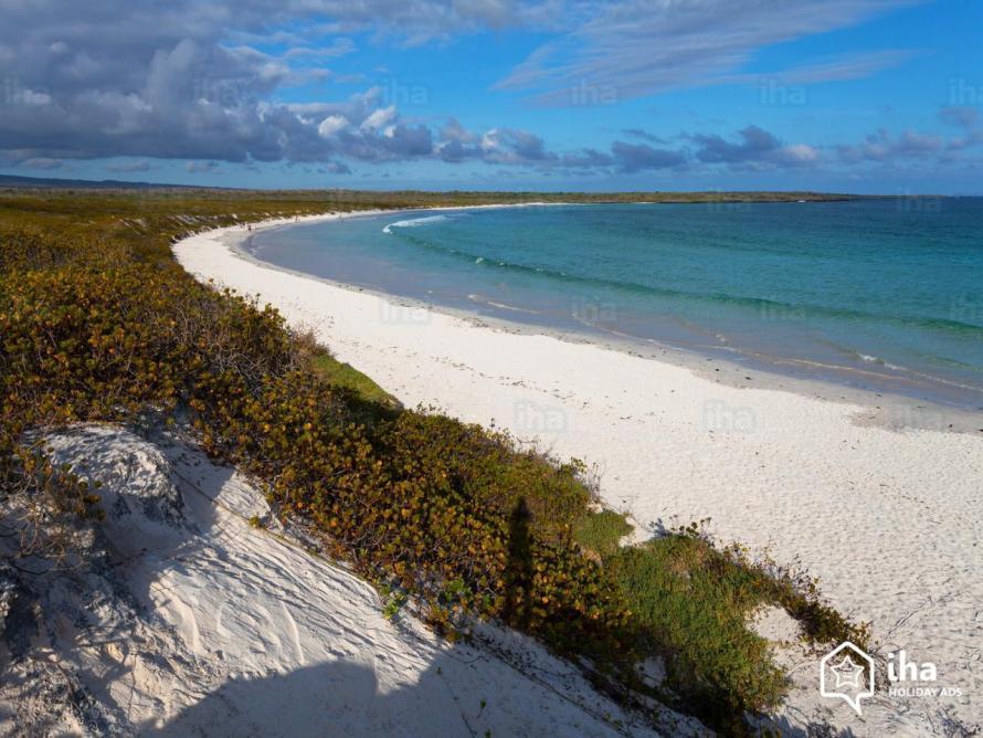 Galapagos-islands-Bay-of-tortuga-in-the-galapagos-islands