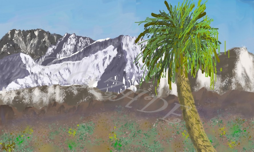 Palm tree of Haut Atlas_D