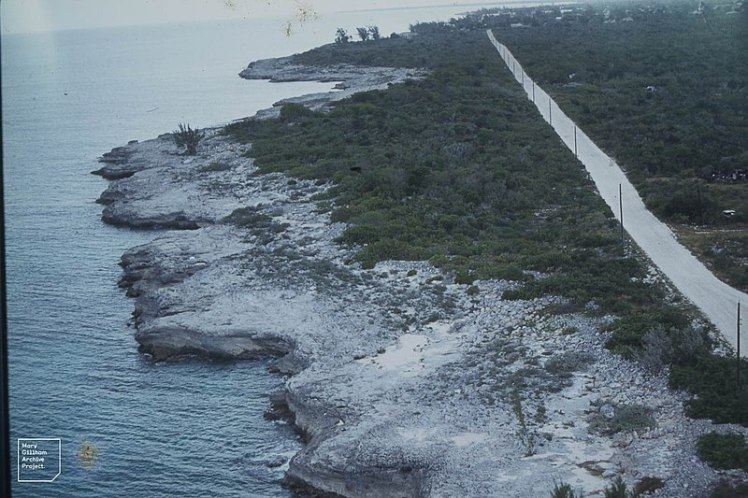 Inagua lighthouse scrub at south end