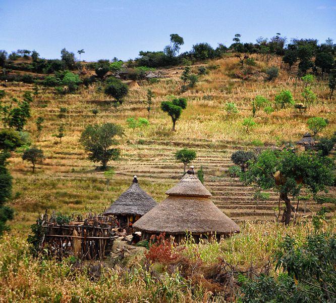 Konso_Tribal_Land,_Ethiopia_(10420388254)