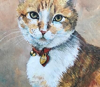 Cat Portrait Darwin