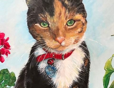 Cat Portrait Calico on the Window Ledge