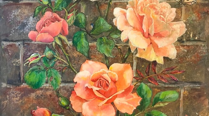 Peach Roses Climbing Brick Wall on Slate