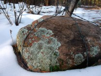 Mossy Rock in the Snow