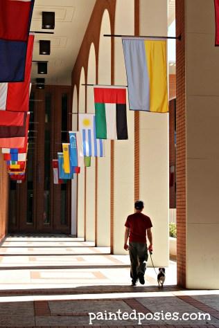 Flags Overhead