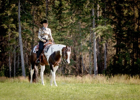 Western Canada Top Western Pleasure Stallion