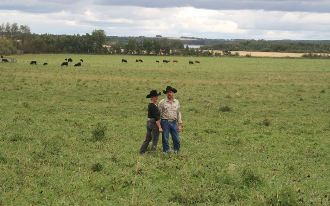 Bruce and Laura with cattle in pasture