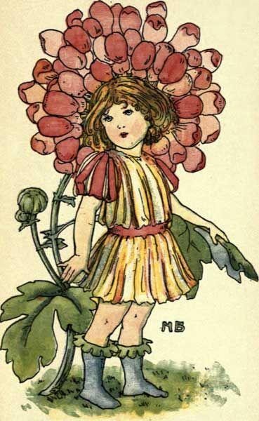 dahlia girl
