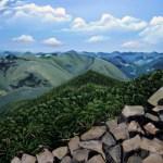 Вид с вершины, 60х80 см, холст, масло -художник Валентина Пилипенко